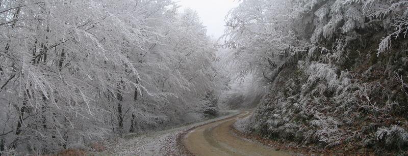 Les Vosges en Hiver