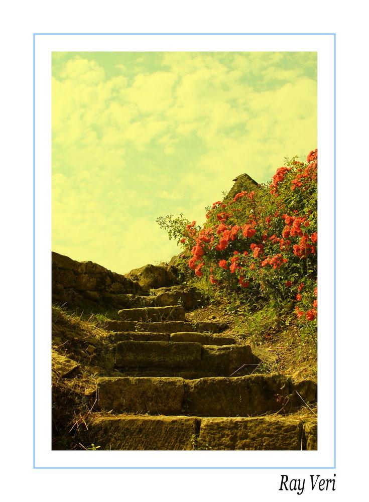l'escalier du paradis