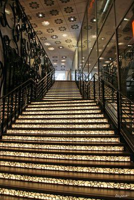 L'escalier lumineux