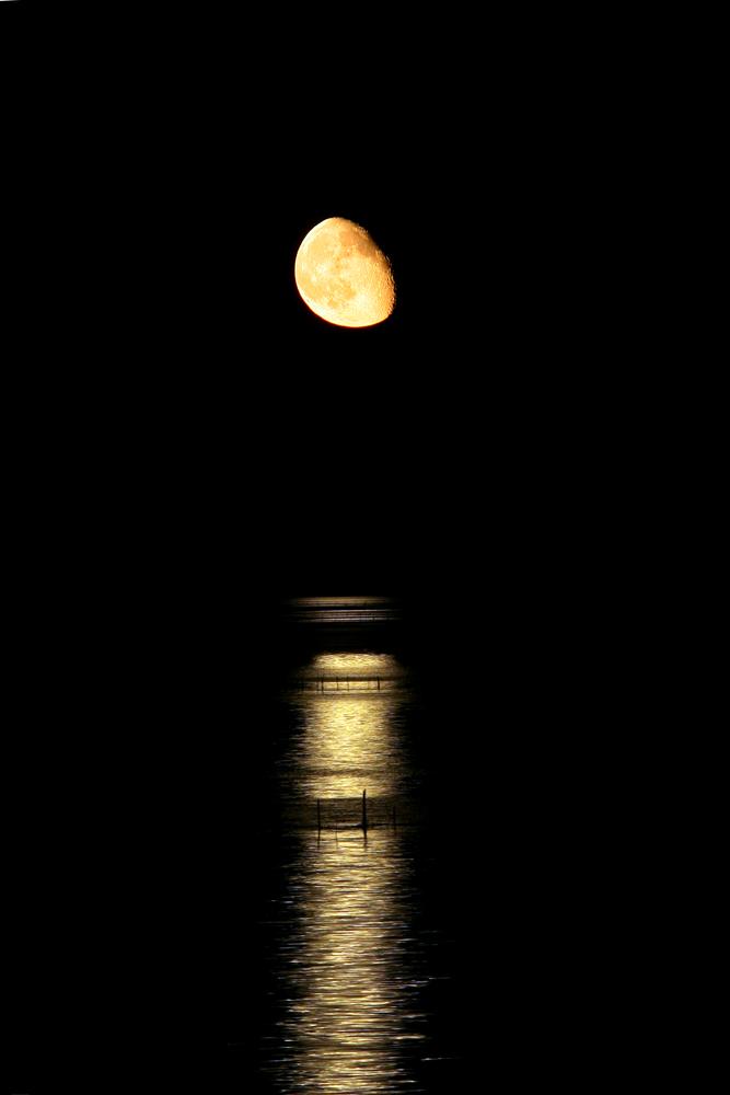 Lesina n' Moon