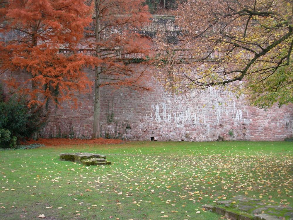 l'espressione dell'autunno