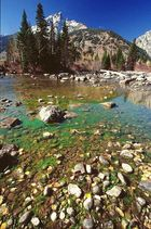 Less Water in Teton Creek