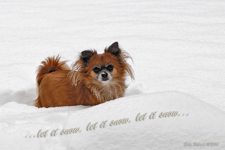 let it snow.....