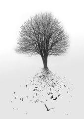 Let te nature flying away...