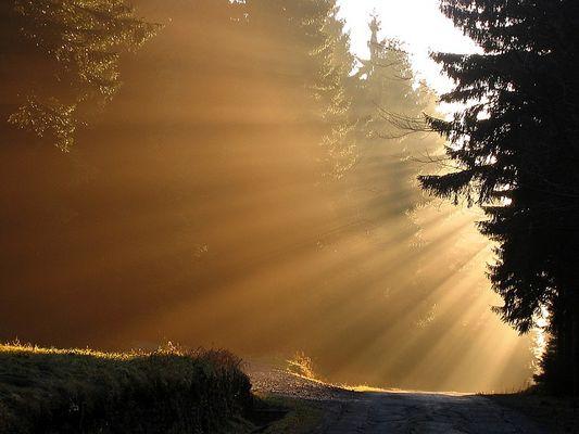 Let the Sun shine....
