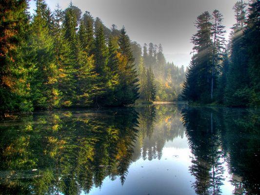 l'étang 2