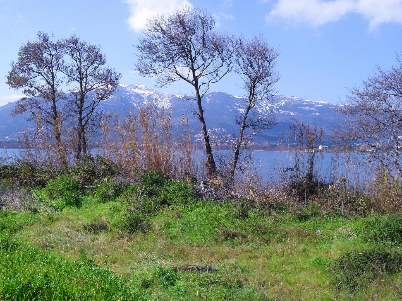 L'étang de biguglia bastia (haute corse)