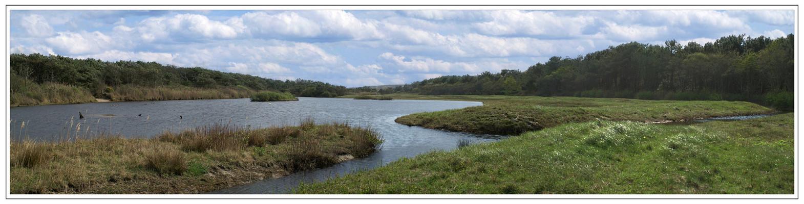 L'étang de la Mallouèyre