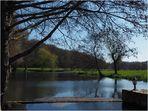 L'étang de la Sonnette au printemps