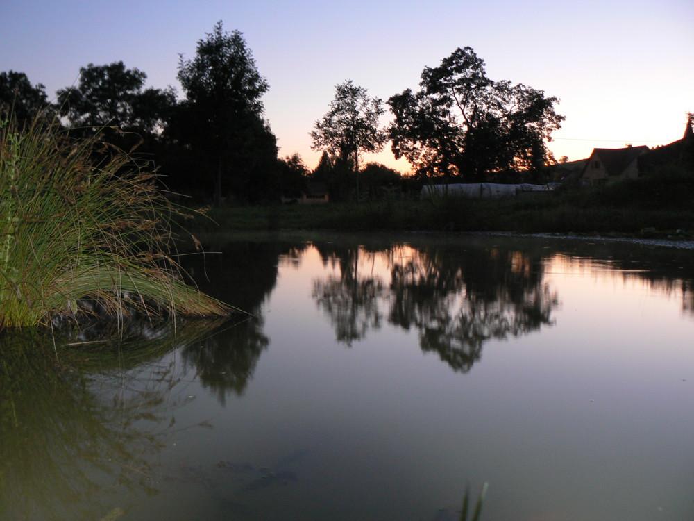 l'étang de marie reine