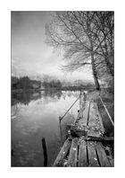 L'étang des Grenouilles