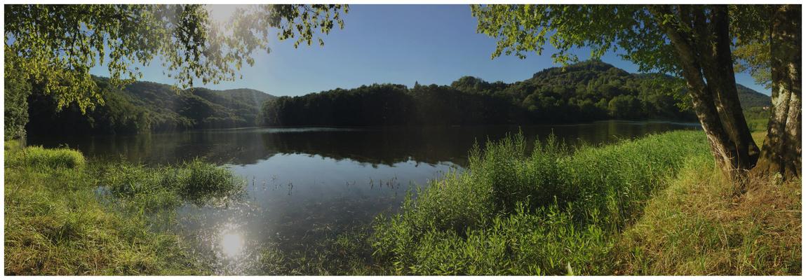 L'été au bord du lac
