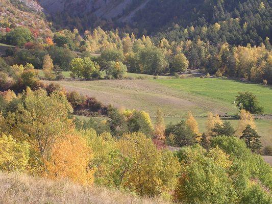 L'été indien: Alpes de htes-Provence