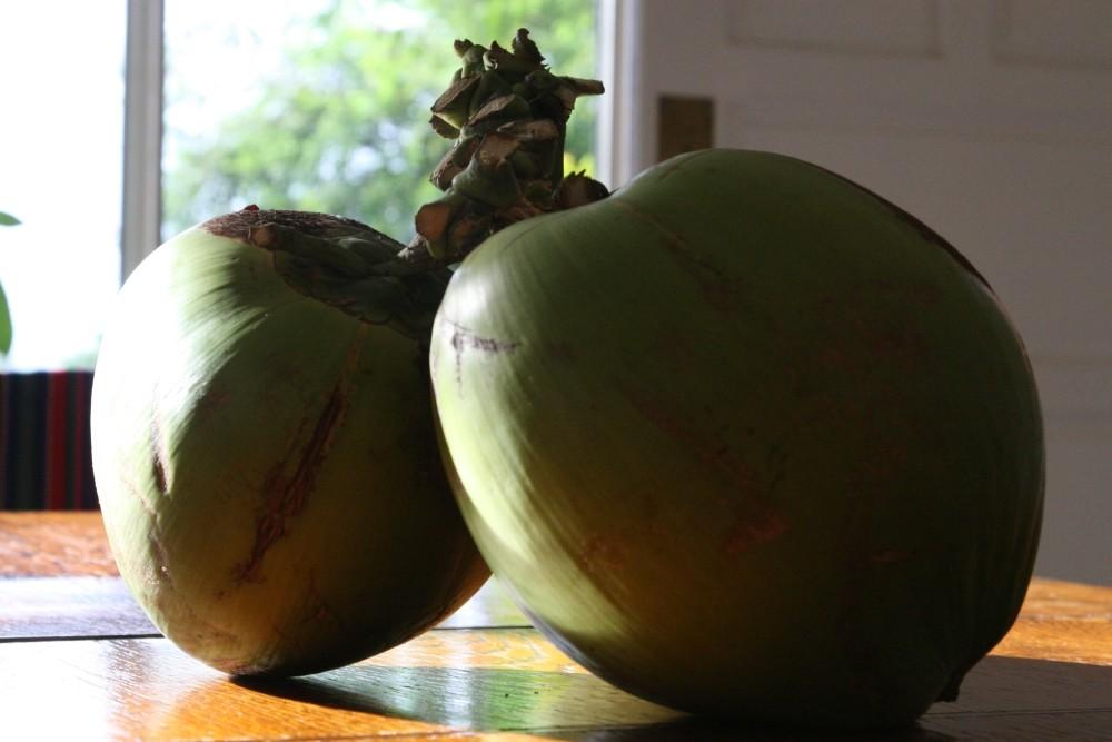 let´s go (coco)nuts