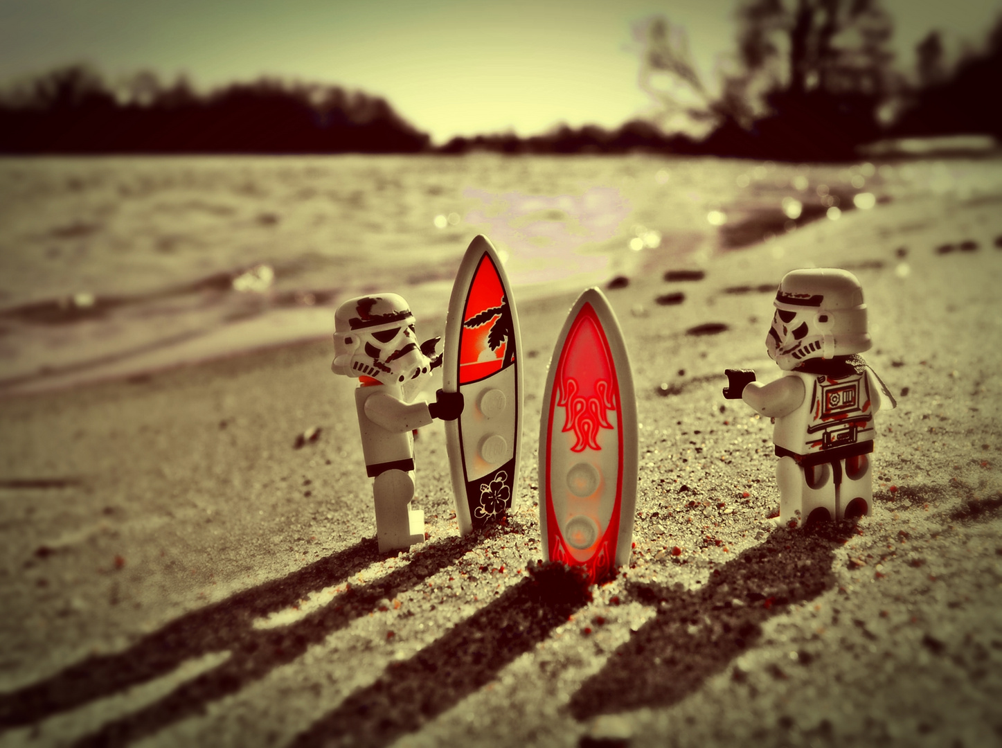 Let's go surfin' !