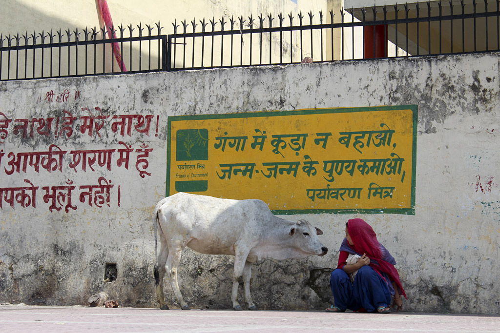 ... Let's talk, Rishikesh, India ...