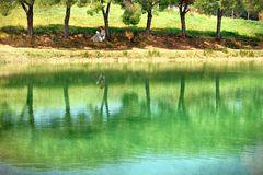 Letture in riva al lago