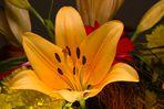 Letzendlich bei der Blüte angelangt
