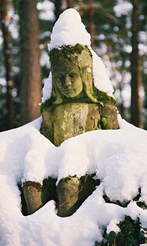 Letzte Grüße vom Winter......
