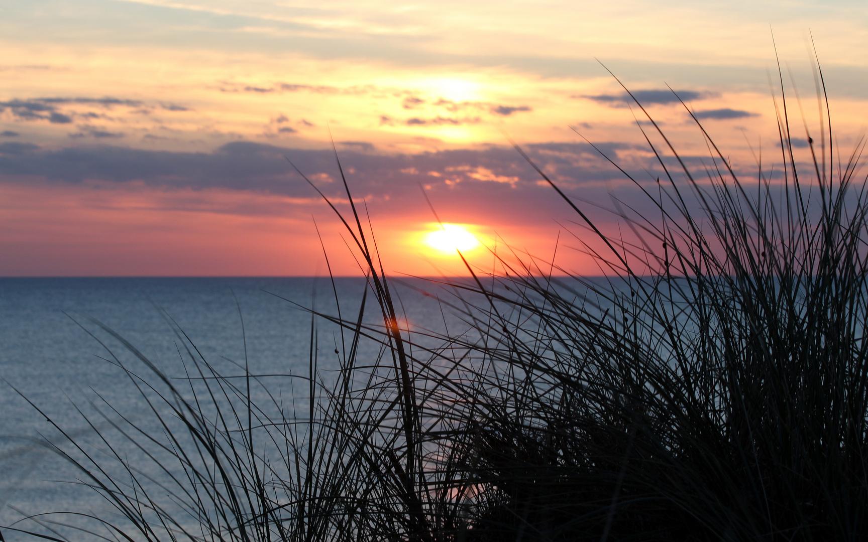 Letzte Sonnenstrahlen über Vedersø Klit (mit Marienkäfersilhouette)