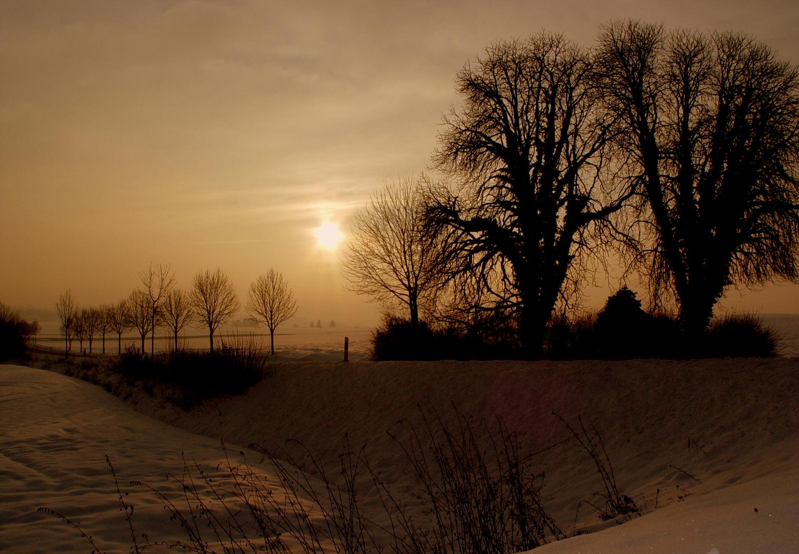 Letzte Sonnenstunden