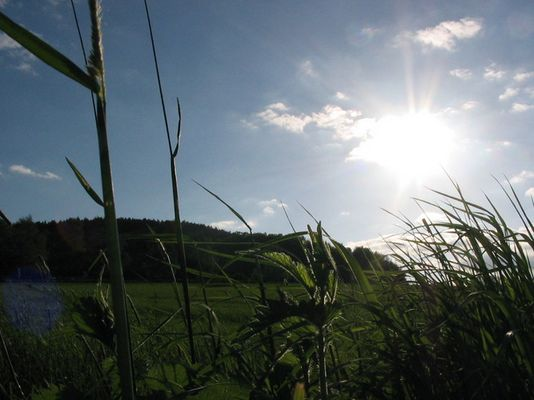 Letzte Tage des Sommers