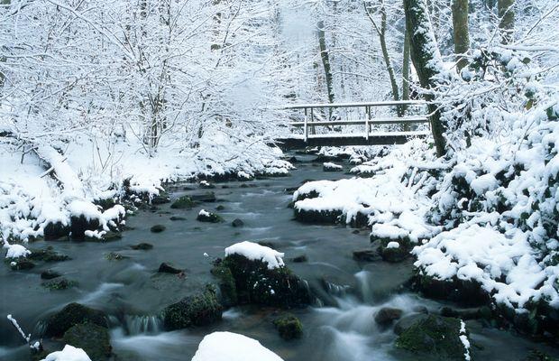 Letzten Winter ...
