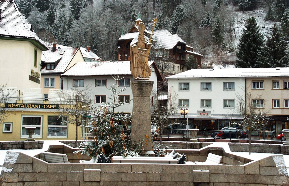 Letzten Winter in St.Blasien 2
