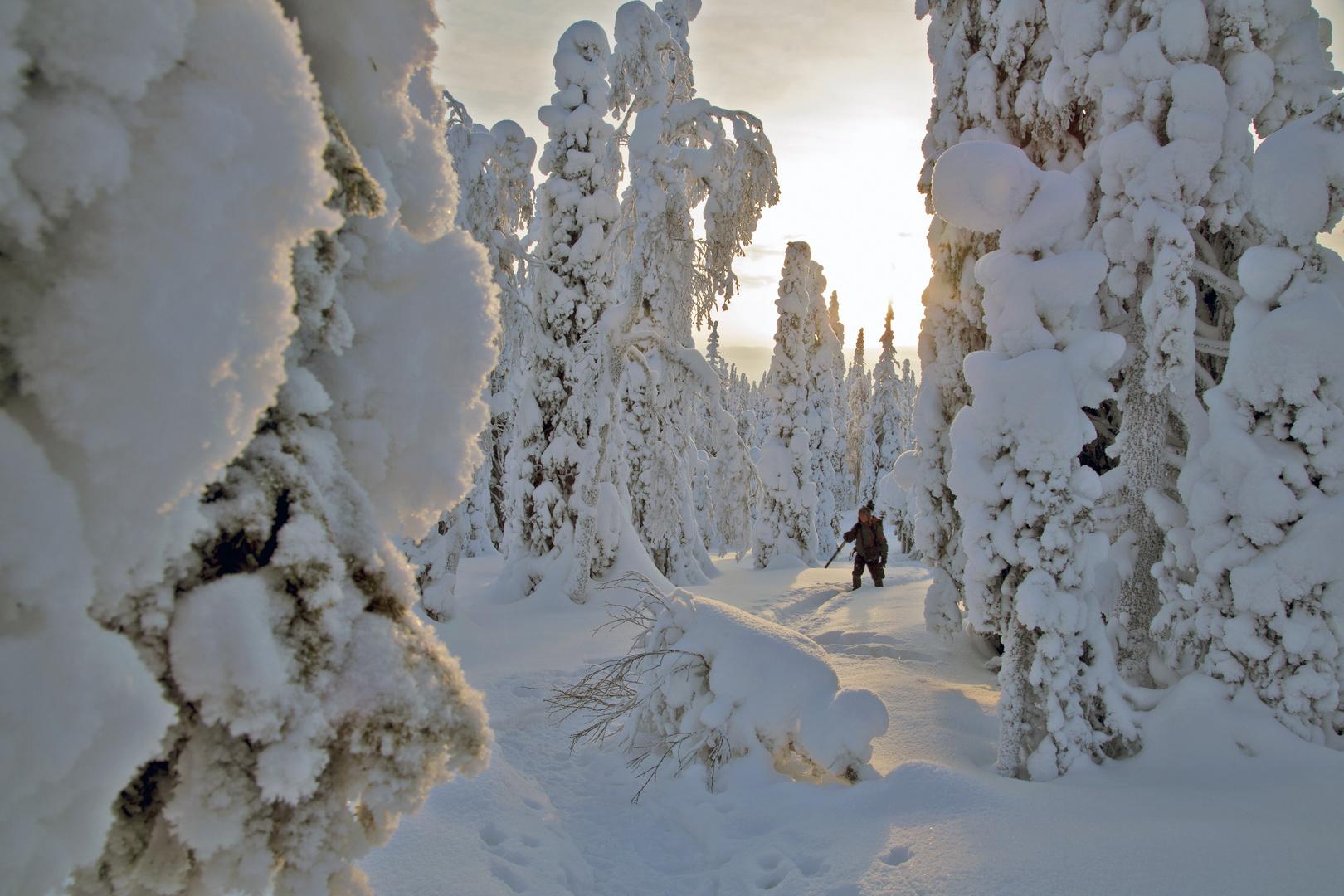 Letzter Gruß des Winters...