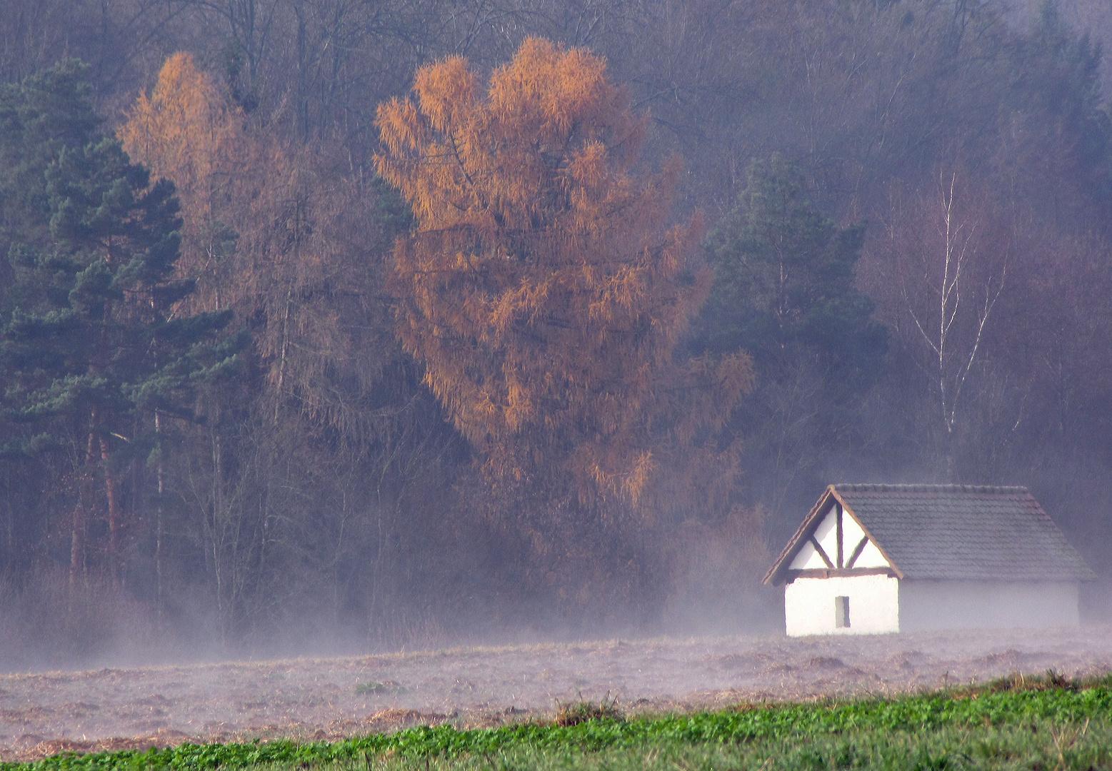 Letzter Herbstmorgen