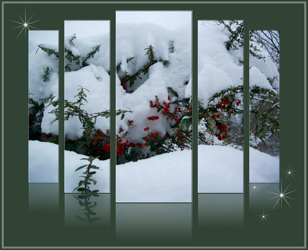Letzter Wintergruss