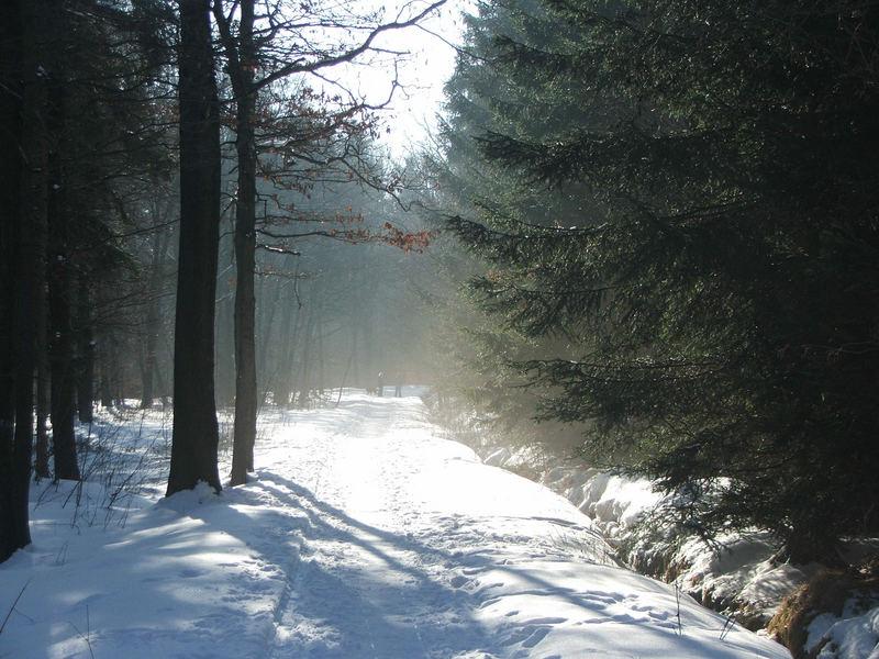 letzter Wintertag?