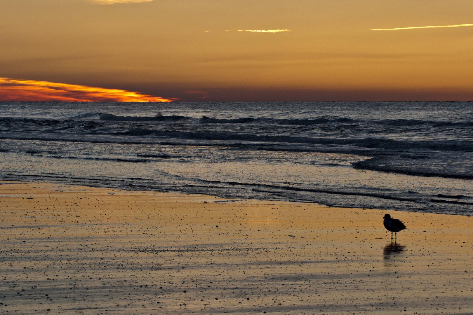 Letztes Abendlicht - Sonnenuntergang auf Norderney