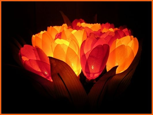 Leucht-Blumen