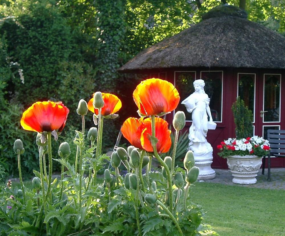 leuchtende Fackeln im Garten