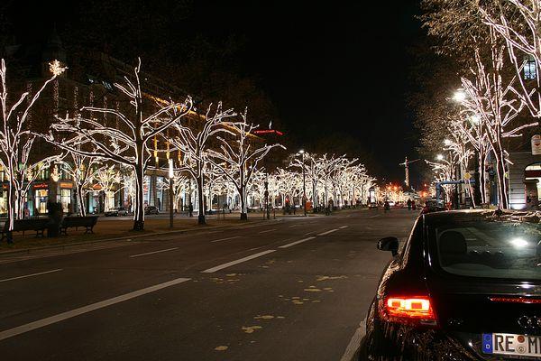 Leuchtende Linden