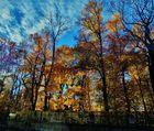 Leuchtender, bunter Herbst