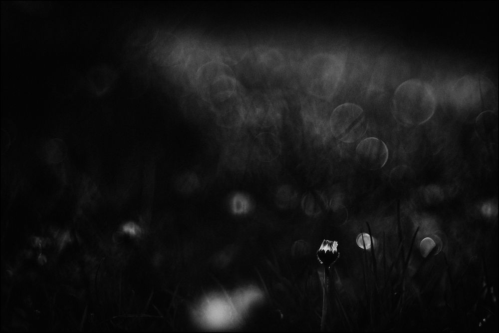 Leuchtendes Schwarz