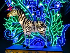 Leuchtendes Zebra