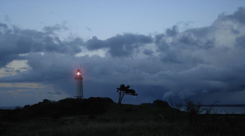 Leuchtfeuer am Dornbusch