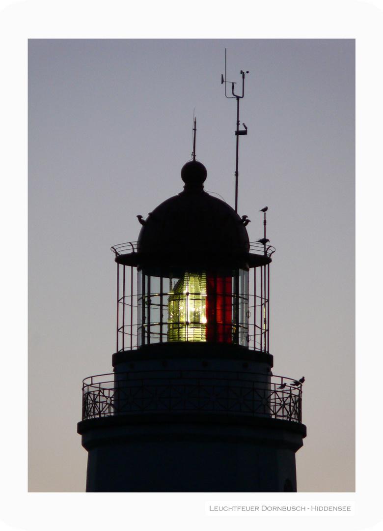 Leuchtfeuer Dornbusch