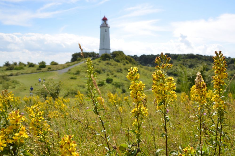 Leuchtturm von der Nordseite