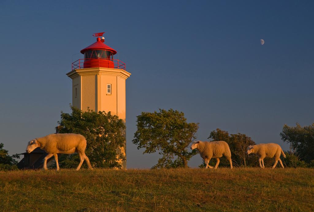 Leuchtturm Westermarkelsdorf