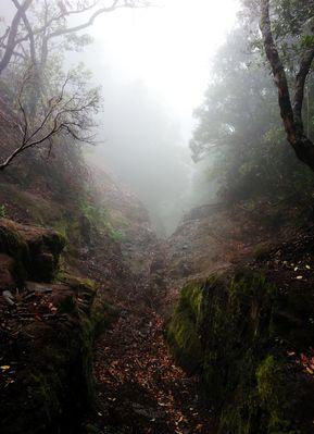 Levadas a Madeira