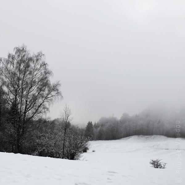 levé de brouillard