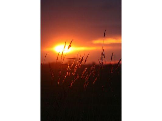levée de soleil