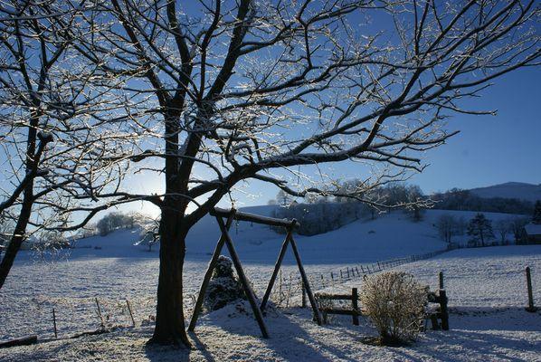 levée de soleil sous la neige