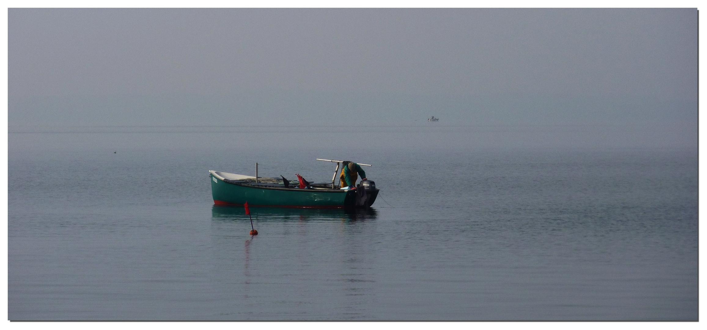 LEVEE DES FILETS (pêcheur sur le lac Léman)
