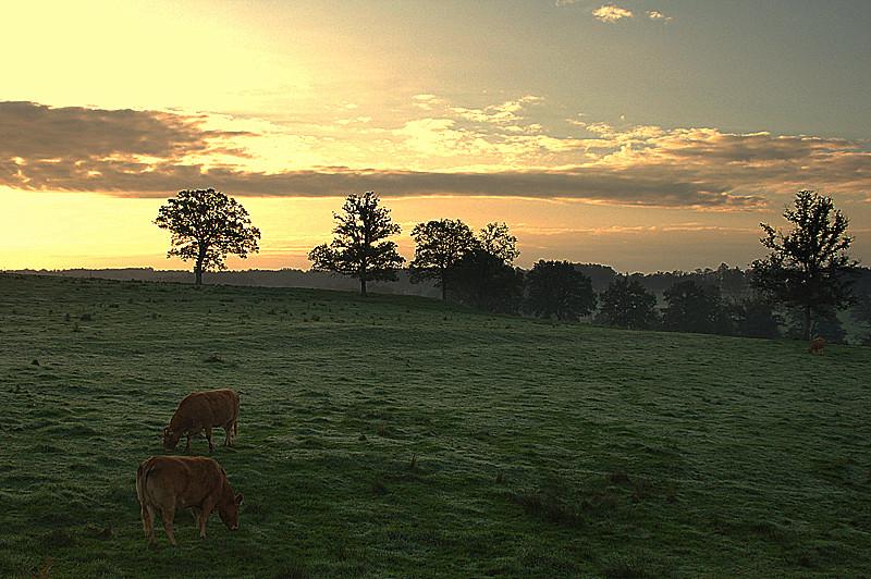 Lever de soleil a la campagne !
