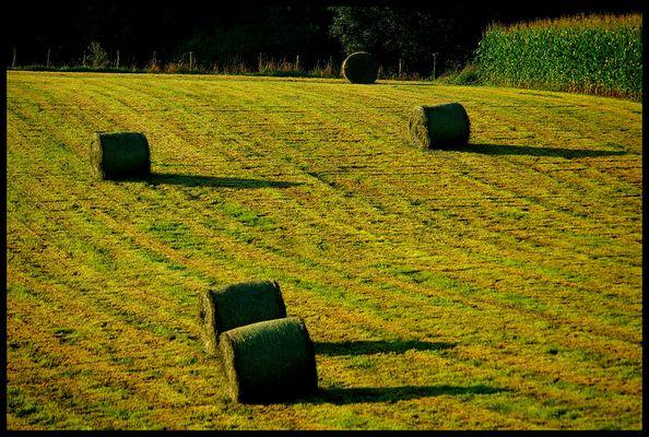 Lever de soleil au Pays-Basque (Lantabat)